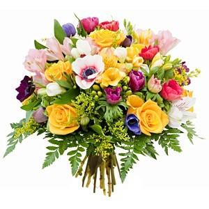 kwiaty186